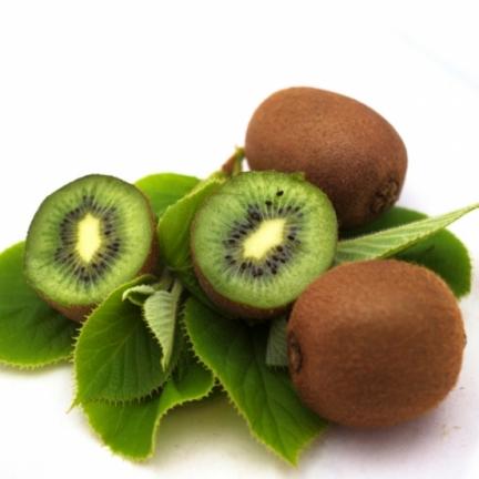 Kiwi chinensis Solo (autofertile)