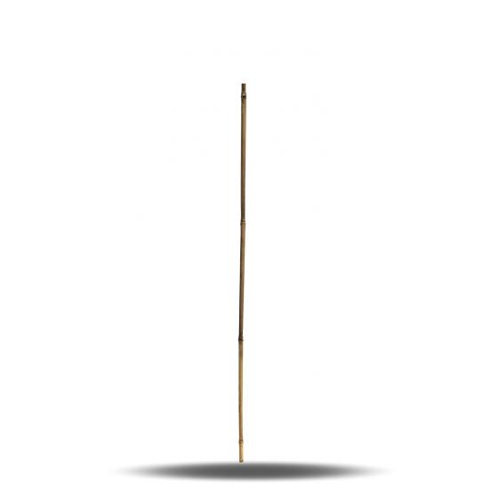 Lot de 10 tuteurs - 105 cm