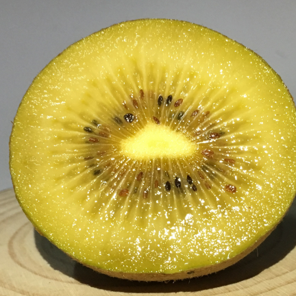 Kiwi chinensis Golden Delight (Femelle)