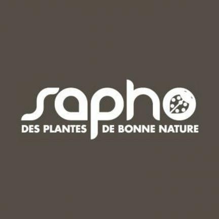 Sorbaire à feuilles de sorbier sorbifolia Pink Hopi® 'COUSORB05'